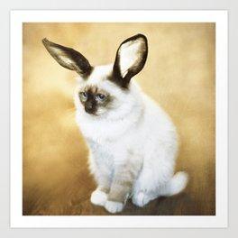 Cat Rabbit Art Print