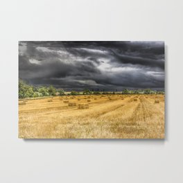 The Farm Monochrome and Color Metal Print