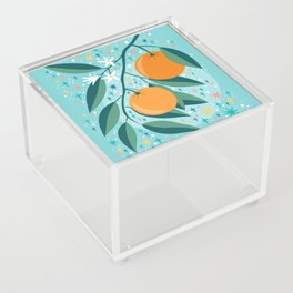 Oranges Acrylic Box