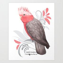 Galah Cockatoo Art Print
