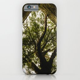 Under the Yew iPhone Case