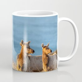 Tule Elk Cows II Coffee Mug