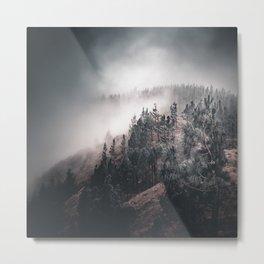Enchanting forest 4 Metal Print