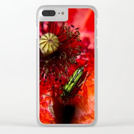 Little green insect while he's walking on a poppy Clear iPhone Case