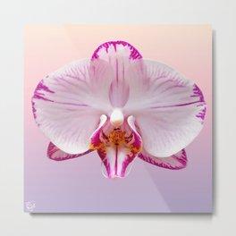 Orchid Portrait Metal Print