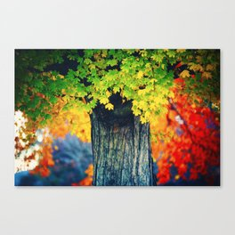 Bridging Seasons Canvas Print