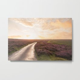 Road to happiness Metal Print