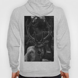 The Antlers (Black and White) Hoody