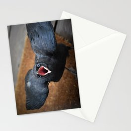 Baby Crow  Stationery Cards