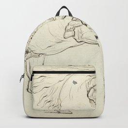 George Stubbs - Twee vechtende hengsten Backpack