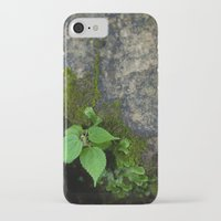 tennessee iPhone & iPod Cases featuring Tennessee Creek by The Magic of Nature & The True You