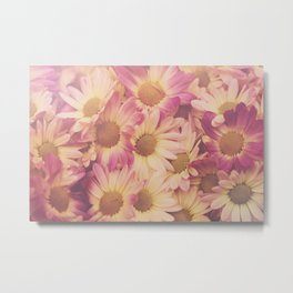 Sun Drenched Daisies Metal Print