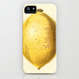 Vintage Lemon Watercolor Painting iPhone Case