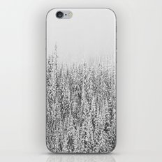Frozen Winter iPhone & iPod Skin