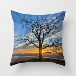 Sunburst Cottonwood Throw Pillow