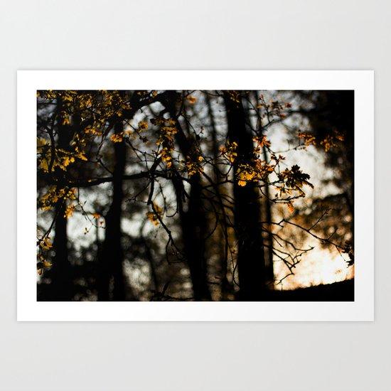 trees copper Art Print
