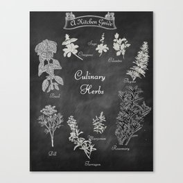 Culinary Herbs for the Kitchen Canvas Print