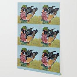 Wood duck Wallpaper