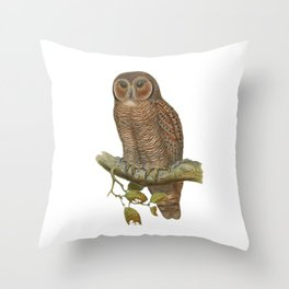 Lonely Owl Realistic Painting Throw Pillow