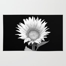 White Sunflower Black Background Rug