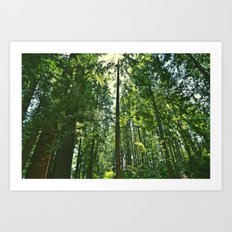 i want to be on the tops of all the trees Art Print