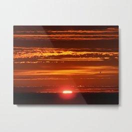 Red Sky Flight Metal Print