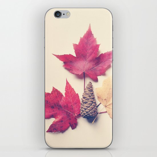 Red Maple Leaf Collection iPhone & iPod Skin