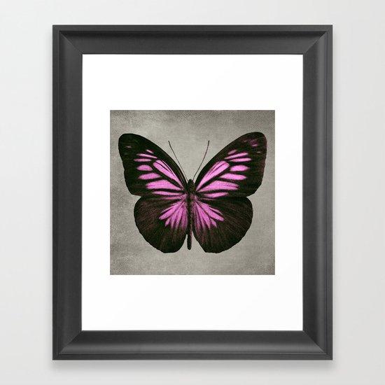 Papillon (Pink) Framed Art Print