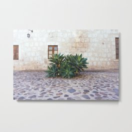 Succulents in the Monastery Courtyard, Arequipa, Peru Metal Print