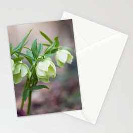 Green Hellebore Stationery Cards
