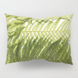 House Plant Fern Leaf Silhouette Sunlight Zen Photo Pillow Sham