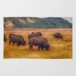 Bison at Yellowstone Rug