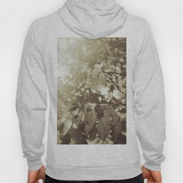 Abide with Me (Gold) Hoody
