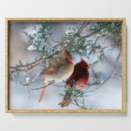 Shining on Her Own (Cardinal) Serving Tray