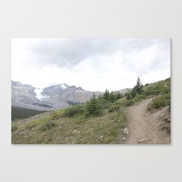 Wilcox Pass 1 Canvas Print
