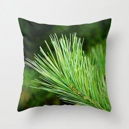 White pine branch Throw Pillow