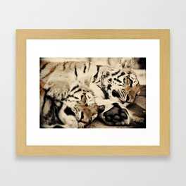 I'll keep you warm... Framed Art Print