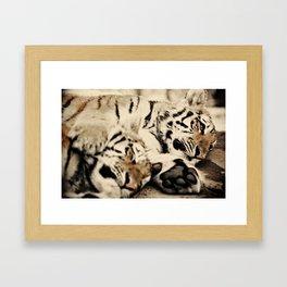I'll keep you warm... Framed Art Print