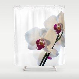 Orkidea Shower Curtain