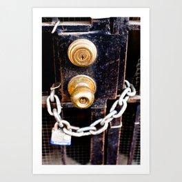 Locked 2011 Art Print