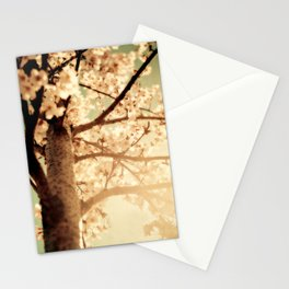 Rays of sunshine, brings you hope & joy for your everyday!! Stationery Cards