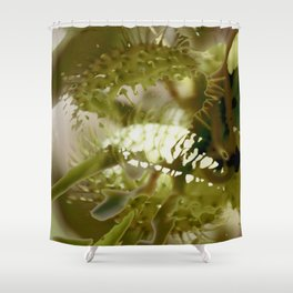 Fatty Prickle Shower Curtain