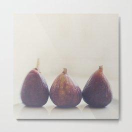 We 3 Figs Metal Print
