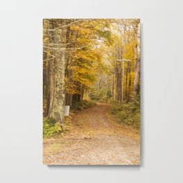 The Unpaved Path - Fall Colors Metal Print