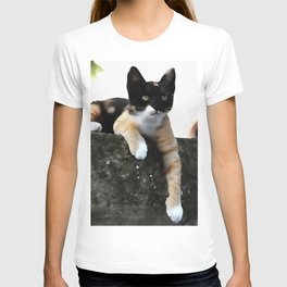 Just Chillin Tricolor Cat T-shirt
