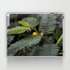 Blooming Fern Laptop & iPad Skin