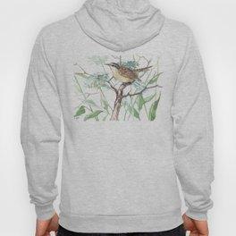 Carolina Warbler in the Field, sofgt brown sage green colors Hoody