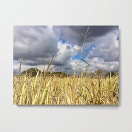 Clouds Rolling Over the Cornfield by Smokies Art Metal Print