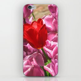 Prima Donna Among The Tulips iPhone Skin