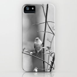 Ruby-Crowned Kinglet, Small Bird iPhone Case